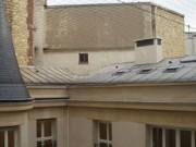 Fourniture ou pose de filet anti pigeon - Filet en polyéthylène pour repousser les pigeons, mouettes, moineaux et étourneaux