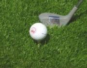 Gazon naturel pour terrain de golf - Gazon haut de gamme pour terrain de golf
