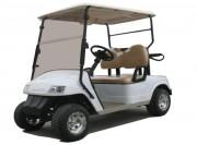 Golfette électrique 2 places - 2 places