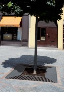 Grille d'arbre acier - Dimensions (Ø) : 1000 - 1300 mm ou 1000 x 1000 - 1300 x 1300 mm