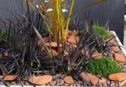 Jardin prêt à poser - Bacs amovibles en plastique épais
