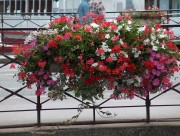 Jardinière Patrimoine 1050 mm - Pot de fleurissement Patrimoine