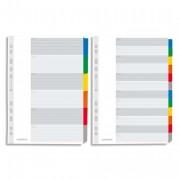 Jeu d'intercalaires 12 positions maxi format / pochettes carte blanche à onglets plastif couleur - Elba