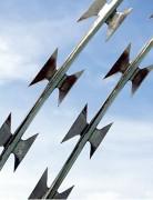 Ligne barbelée de protection - Longueur : 200 m - Lames courtes ou standards