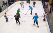 Mini patinoire synthétique - Patinoire artificielle pour activités de glisse ludiques