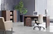 Mobilier de bureau de direction professionnel - Dimensions des bureaux en cm : 170x97x76 -  200x100x76