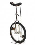 Monocycle en acier chromé - 3 diamètres différents (cm) : 45 - 50 - 60