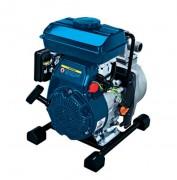 Motopompes eaux claires et eaux peu chargées - 11m3/h