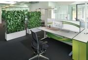 Mur acoustique végétal bureau - Cloison naturelle, mur d'eau
