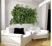 Mur végétal d'intérieur 420 x 400 mm - Dimensions (H x L) mm : 420 x 400