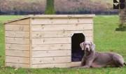 Niche en bois pour chien - Bois de sapin imprégné - 3 dimensions