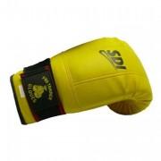 Paire de gant de boxe pro