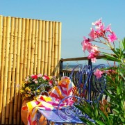 Panneau bambou
