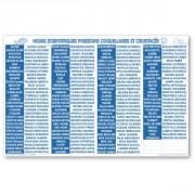 Panneau d'affichage équivalence poissonnerie - Vendu à l'unité - 55 x 45 cm - PS blanc 1 mm