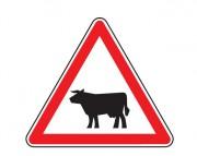 Panneau signalant le passage d'animaux domestiques A15a1/ A15a2
