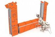 Parcours d'agility chien - Activité éducative et sportive