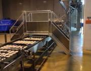 Passerelle double accès sur chaîne de production - 2 escaliers d'accès - Protections latérales - Contre marche