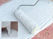 Peinture imperméabilisante - Protection et Réparation : 2 kg par m²