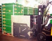 Pince de manutention - Pince à cartons et appareils électromenagers