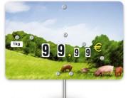 Pique prix porc - Dimensions (cm) : 10,6 x 7