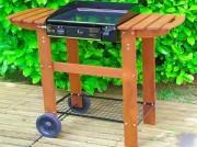 Plancha à gaz sur chariot - Dimensions de la plaque de cuisson (L x l) : 40 x 43 cm