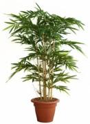 Plante artificielle bambou vert 150 cm - Bambou vert