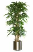 Plante artificielle bambou vert 210 cm - Bambou, 210 cm