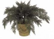 Plante artificielle d'extérieur juniperus