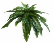 Plante artificielle fougère verte - Fougère verte