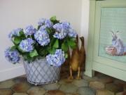 Plante fleurie hortensia - Hauteur : 44 cm