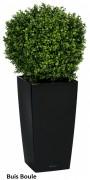 Plantes artificielles pour bureau - Bac en PVC noir