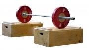 Plots de musculation 30cm - 30 cm de hauteur - Butées stop disques intégrées