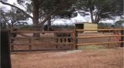 Portail pour clôture équestre - Un vantail : 1m40 de hauteur