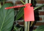 Porte Etiquettes - Dimension platine (mm) : 45 x 65