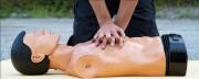 Programme Formation sauveteur secouriste du travail - Travail sur cas concrets