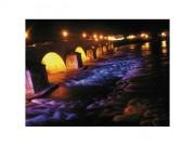 Projecteur LED pour bassin aquatique - Projecteur aquatique LED pour professionnel