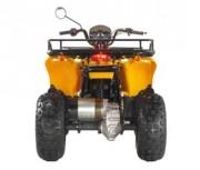quad électrique