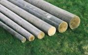 Rondin bois en pin - Diamètre (cm) : De 6 à 20