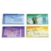 Sachet de 6 enveloppes chéquier en polypropylène, gamme T Collection coloris assortis - TCOLLECTION TARIFOLD