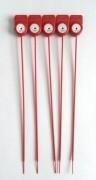 Scellé en nylon pour extincteur - Matériel: corps en nylon (PP) - Extincteur d'incendie