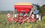 Semoir direct agricole