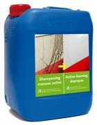 Shampooing dégraissant - Plus de sécurité, plus d'efficacité et moins d'impact sur l'environnement