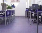 Sol pour salles de classe - DecoFloor Série 600 Réf. Prestige