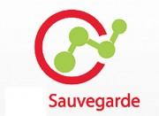 Solution de sauvegarde de données - Volume de données à sauvegarder : de  250 Go à 120 To