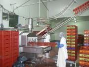 Système de lavage de bacs sur convoyeur aérien - Système de lavage de bacs sur convoyeur aérien trolley TRANS T