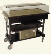 Table réfrigérée pour service restauration