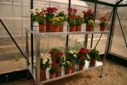 Table réversible pour serre de jardin