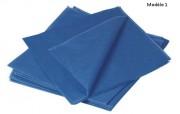 Taie d'oreiller hygiénique - Dimensions (L x l) cm : 60 x 60