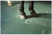 Tapis de boxes pour chevaux - Dimensions (L x l) : 117 x 177 cm