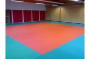 Tapis de judo